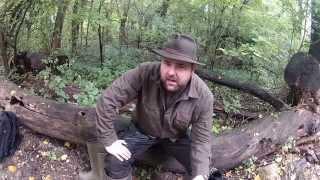 Gummistiefel Aigle vs Härkila