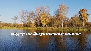 Августовский канал. Ловля на Фидер.