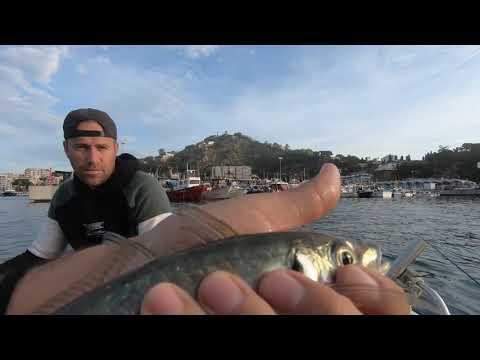 Como Pescar Jureles (Light Spinning)