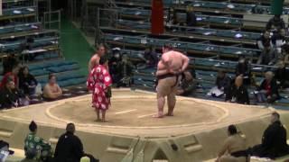 大露羅-海士の島/2017.3.12/orora-aonoshima/day1 #sumo