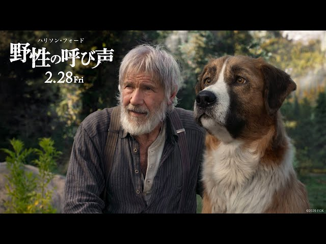 映画『野性の呼び声』予告【最高の冒険編】2月28日(金)公開