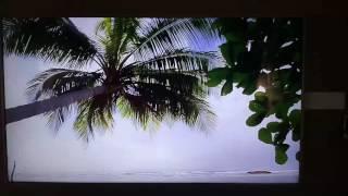 """VU 65"""" full HD SMART TV HD VIDEO 1"""