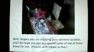 Sasha's Petsjubilee Sample Box Commercial