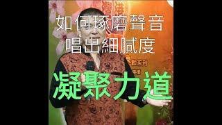呂松霖歌唱技巧教學 【凝聚力道的重要】  無聲的思念(下集) 原唱:張秀卿