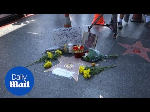 Fans pay tribute to the Aretha Franklin at her Hollywood star