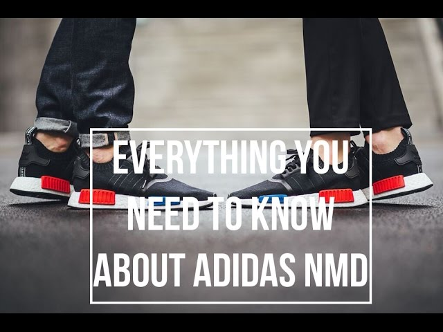 adidas video questions