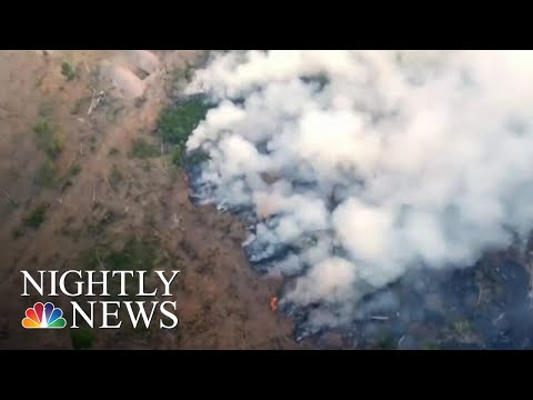 Worldwide Pleas To Save The Amazon As Fires Decimate Rainforest | NBC Nightly News