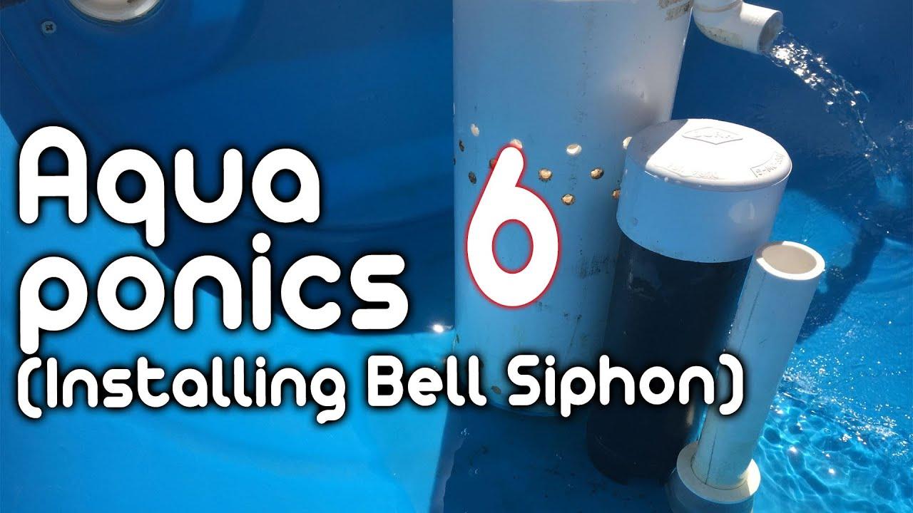 hight resolution of bell siphon dutch bucket