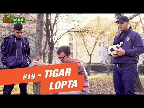 BETparačke PRIČE #19 - Tigar lopta