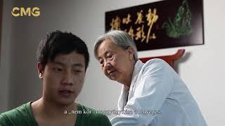 visszér kezelése keleti orvoslás