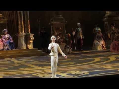 Artem Ovcharenko - The Sleeping Beauty