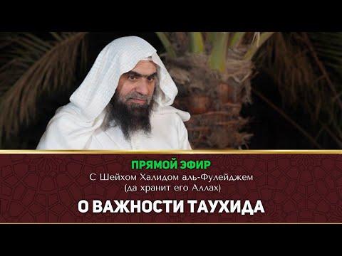 Прямой эфир о Важности Таухида с шейхом Холидам аль Фулейджем