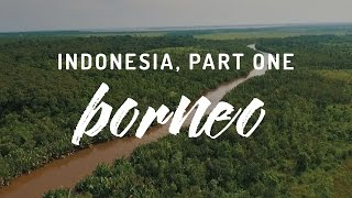 Indonesia, Part One - Tanjung Puting, Borneo