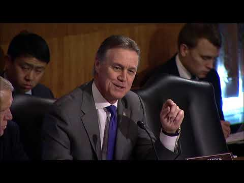 Senator David Perdue Questions Former Equifax CEO in Banking Committee