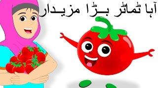 aaha tamatar bada mazedar and more آہا ٹماٹر بڑا مزیدار tomato song urdu rhymes for babies