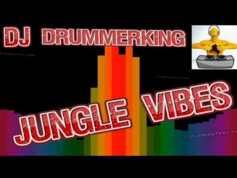 #5- DJ Drummerking- Jungle Vibes