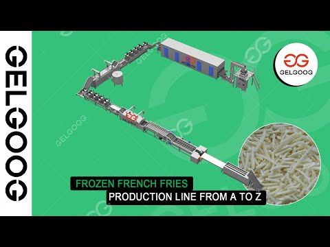 Amazing! Frozen French Fries Making Production Line Process