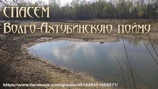 Новости 1канал 04.06.2015 О засухе в на Волге