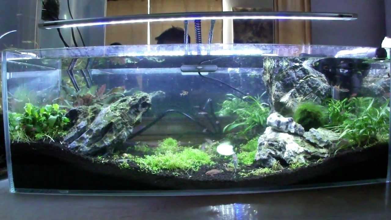 Aquarium nano fish tank - Aquarium Nano Fish Tank