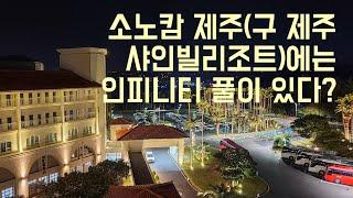 겨울 제주여행 _ 소노캄 제주(구 대명 샤인빌리조트) …