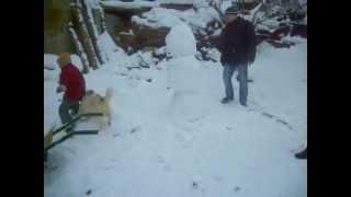 супер прикол. собаке очень весело зимой)))))))))смотреть всем, ржач