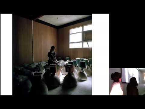 Art Forum: Awkward Beauty - Helen Britton, Justine McKnight and Michelle Taylor