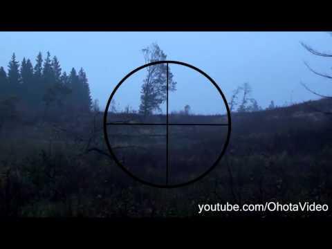 Зимняя охота на лося