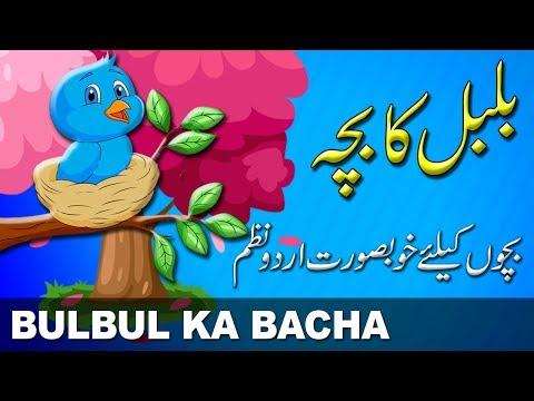 Bulbul Ka Bacha   بلبل کا بچہ   Urdu Nursery Rhyme   Urdu Poem   اردو نظم thumbnail