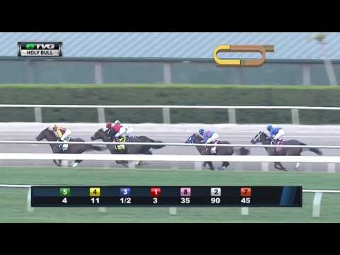RACE REPLAY: 2017 Holy Bull Stakes Featuring Irish War Cry