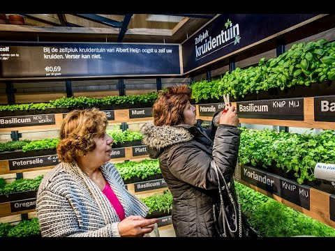 Lessons in experiential retail from around the globe   The Grocer