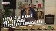 EL COMIDISTA |¿El truco definitivo para conservar el aguacate?