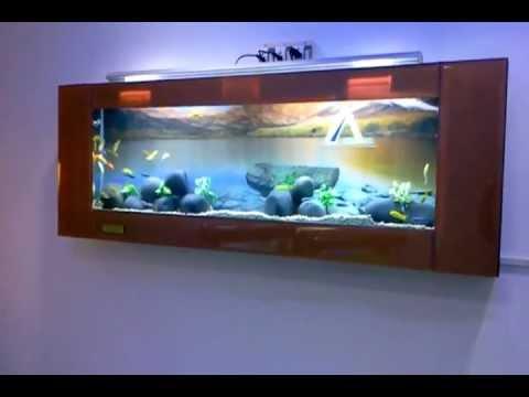 Aquarium Design India Plasma aquarium design Jabbar.chennai,India ...