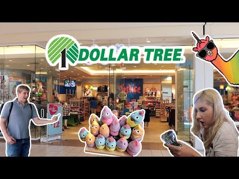 DOLLAR TREE, FLORIDA MALL AND FLORIDAYS RESORT!