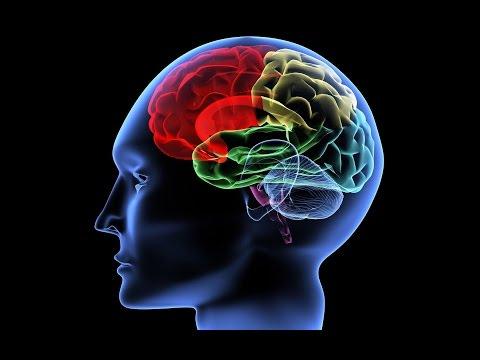 Как улучшить память и внимание - упражнение