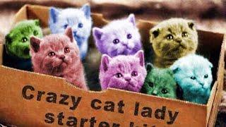 Смешные коты 12 (Funny Cats Compilation 2016)