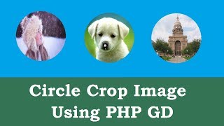 Circle crop image using PHP GD Library