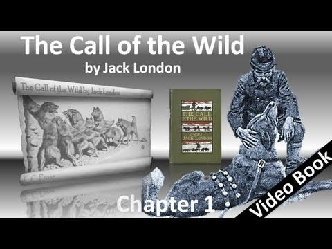 The Call of the Wild by Jack London - Chapter 01 - Into the Primitive