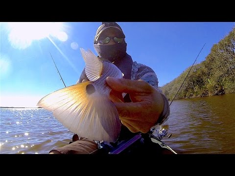 Guana River Redfish And Alligator Encounters