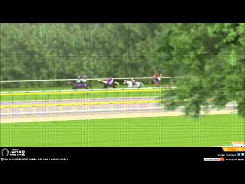 Horse Racing Simulator Pro 2011(Japan World Cup) from YouTube · Duration:  2 minutes 20 seconds
