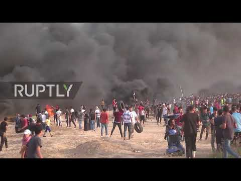 State of Palestine: Over 115 injured as Israeli forces use  ammo in Gaza protest