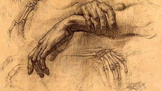 Arm Anatomy - Anatomy Lesson for Artists