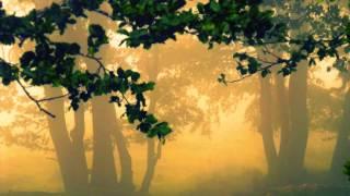 Sibelius: Pelléas er Mélisande [Zinman]