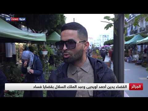 الجزائر.. القضاء يدين أحمد أويحيى وعبد الملك السلال بقضايا فساد  - نشر قبل 3 ساعة