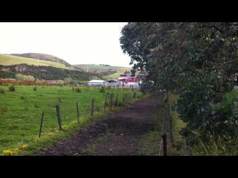 "Horse Slaughterhouse, Gore, New Zealand.  ""Clover Exports"""