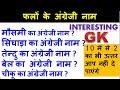 Hindi  Fruit Name in English | Interesting GK | GK QUIZ | GK in Hindi | Amazing GK