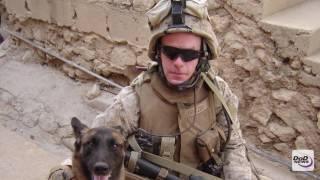 The Light in the Dark: A Combat Veteran's Story