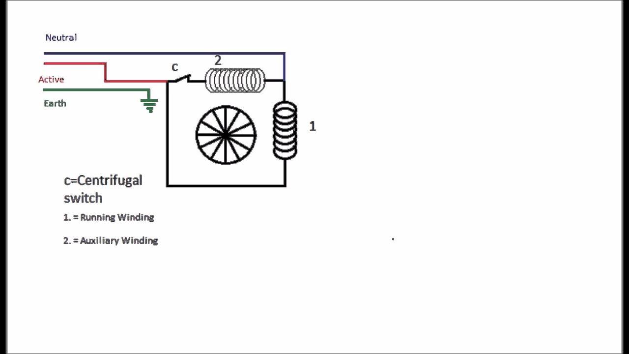 split phase induction motor wiring diagram tp 100 impremedia