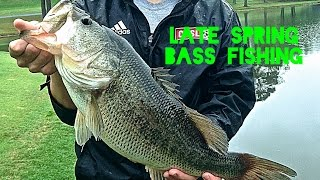 Late Spring Fishing for Huge Bass (8lb and 6.5lb)
