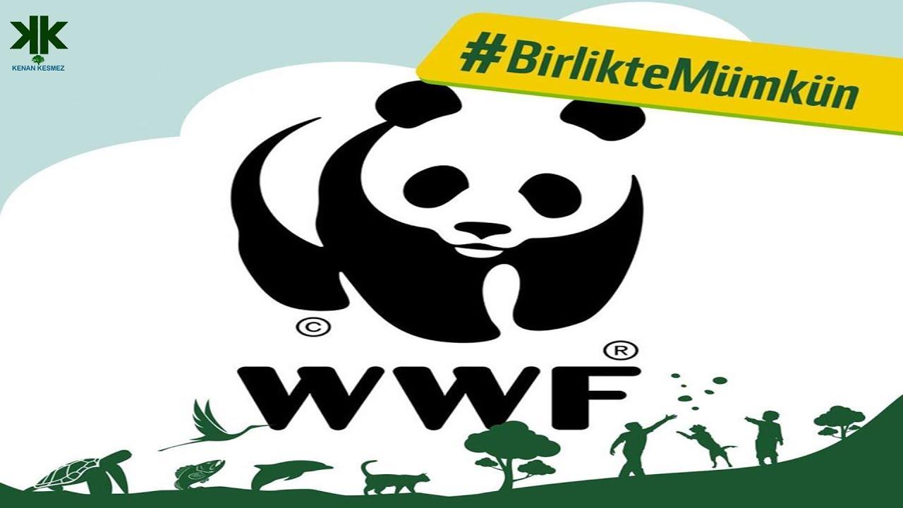 WWF Doğal Hayatı Koruma Vakfı nedir? kimdir?