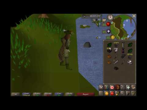 1 Hour Of 3 Tick Cut & Eat Fishing (115.7k)